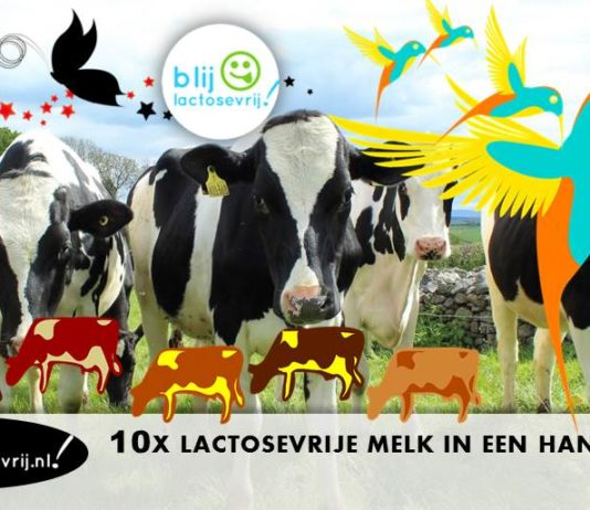 10x volle en halfvolle lactosevrije melk in een handig overzicht