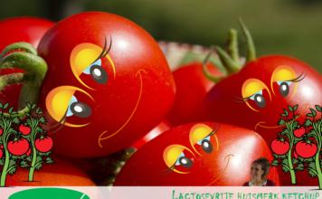 Blij Lactosevrij: bekijk het lijstje met lactosevrije ketchup! Van het huismerk van de bekendste supermarkten en dus lekker geprijsd!