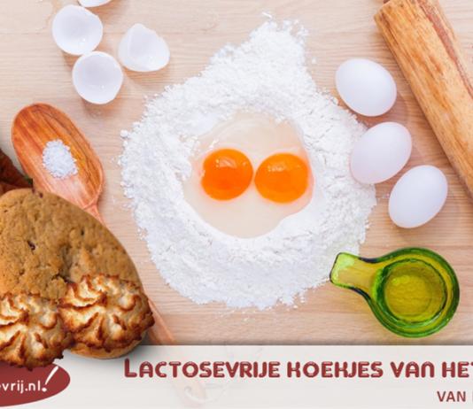 Blij Lactosevrij heeft voor jou de lekkerste lactosevrije koekjes van het huismerk van Albert Heijn (AH), Jumbo, Plus op een rij gezet! Kijk hier!