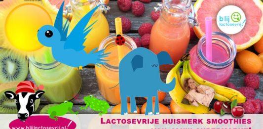 Lactosevrije smoothies van het huismerk van de supermarkt albert heijn jumbo plus