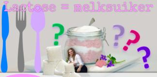 Veel mensen met een lactose intolerantie willen weten wat lactose is. Wil jij dit ook weten en tips over lactosevrij eten? Kijk op Blij Lactosevrij!