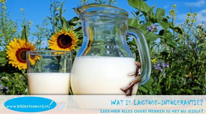 Blij Lactosevrij: heb jij een lactose intolerantie? Dan ben je vast op zoek naar meer informatie, handige ideeën en tips. Kijk snel op www.blijlactosevrij.nl!