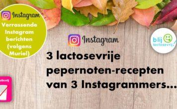 Lactosevrije pepernoten recept Instagram