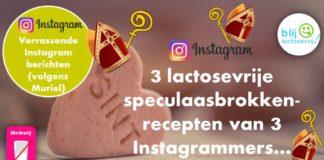 Lactosevrije speculaasbrokken recept glutenvrij Instagram
