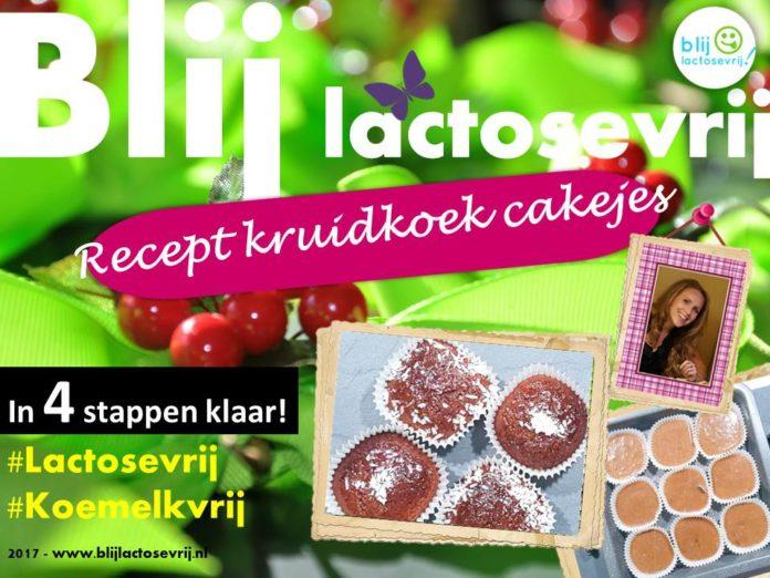 Recept Kruidkoek cakejes lactosevrij en melkvrij