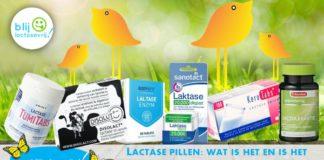 Lactase pillen wat is het wat zijn het en wat zijn lactose pillen