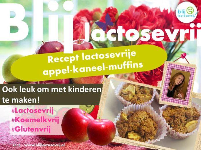 Lactosevrije appel kaneel muffins