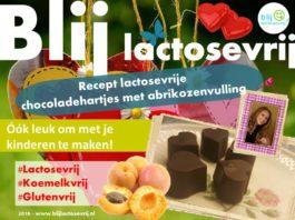 Lactosevrije chocoladehartjes met abrikozen vulling