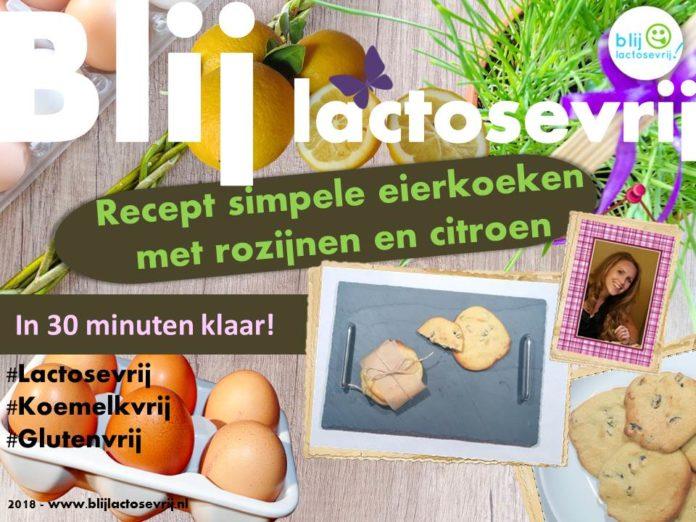 Lactosevrije eierkoeken en melkvrije glutenvrije eierkoeken met rozijnen en citroen