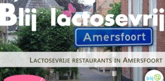 Lactosevrije restaurants in Amersfoort