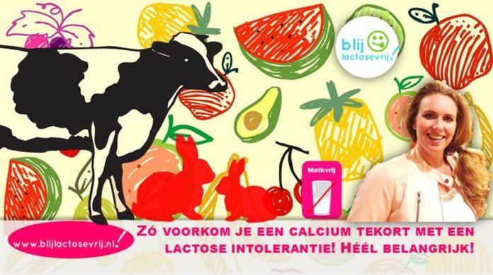 Zo voorkom je een calcium tekort met een lactose intolerantie
