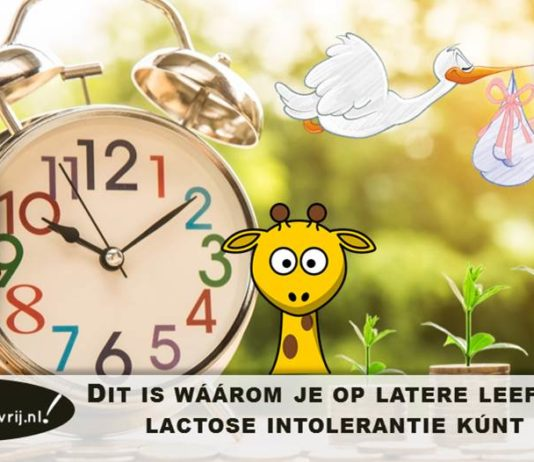 waarom lactose intolerantie op latere leeftijd volwassen leeftijd