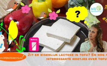 Zit er lactose in tofu, is tofu lactosevrij