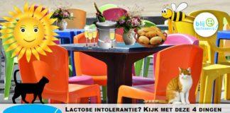 lactose intolerantie terrasje pakken