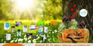15 meest gewilde lactasepillen op een rij