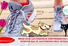 lactosevrije eiwitshakes bij sporten lactosevrij afvallen afslanken